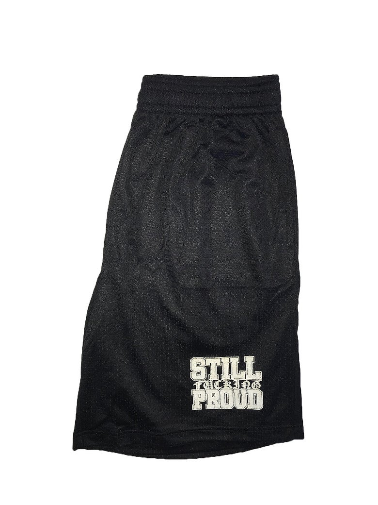 Image of Proud Mesh Shorts