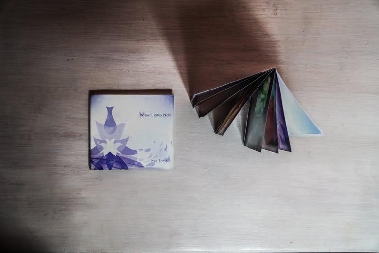 Image of Wishful Lotus Proof CD [DIGIPACK] PRE-ORDER