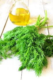 Image of Wild Dill Olive Oil