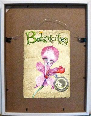 Image of Botanicuties Specimen no.6