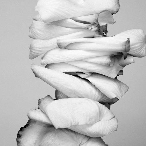 Image of stacks.