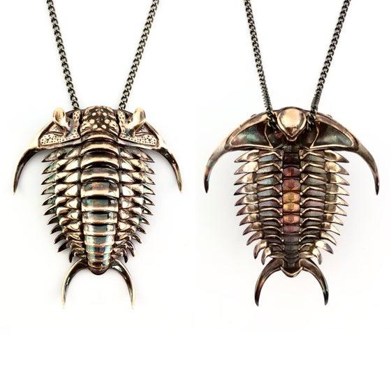Image of Ceraurus trilobite shell pendant