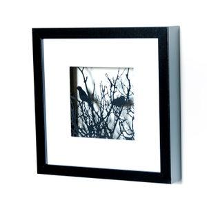 Image of Framed Entangled Scene - Small