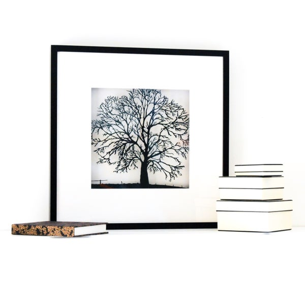 Image of Framed Papercut Tree - Large