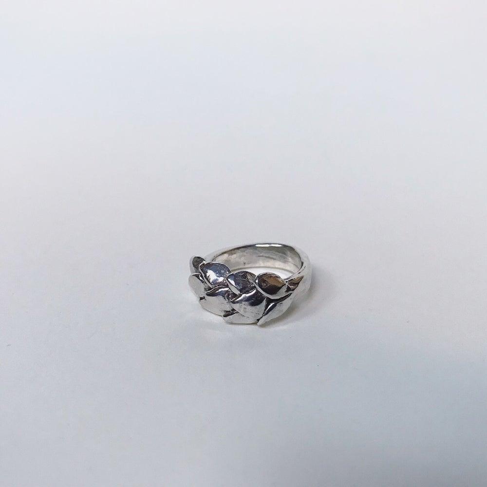 Image of Pangolin Ring