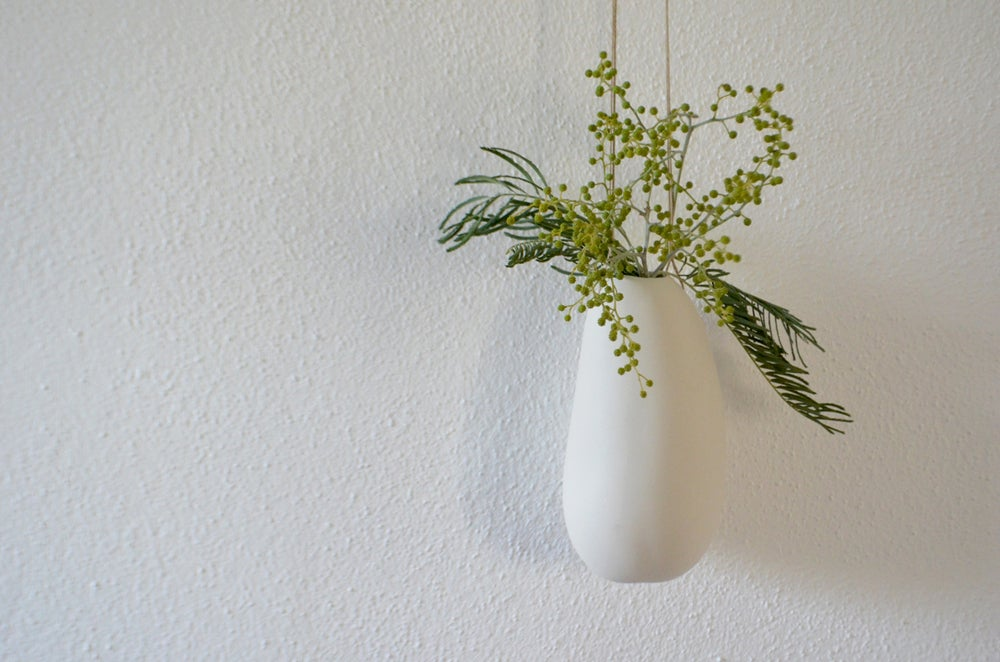 Image of SUSPENDED VASES