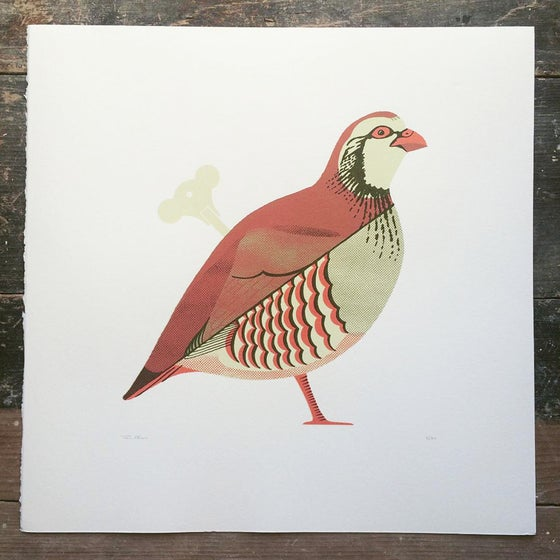 Image of Red Legged Partridge