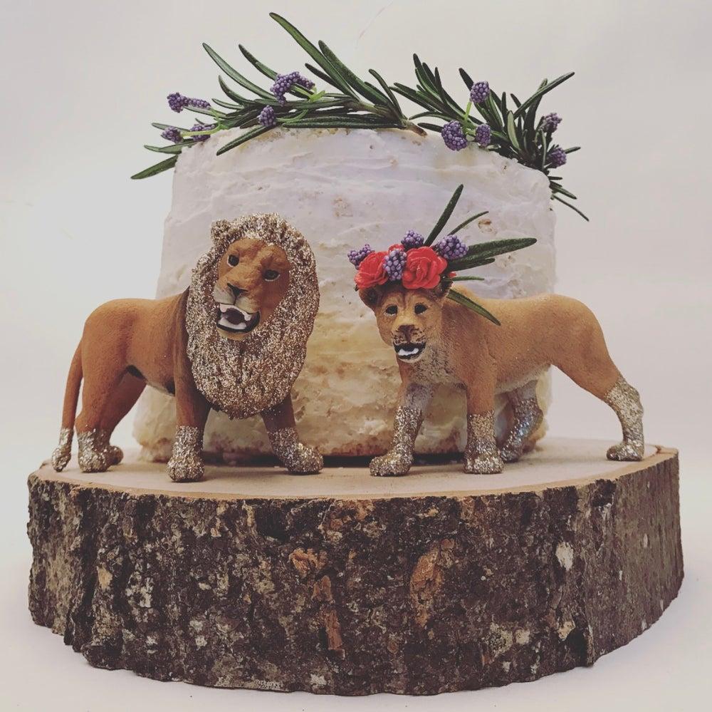 Image of LION & LIONESS