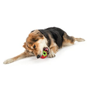 Image of Planet Dog Strawberry in the category  on Uncommon Paws.