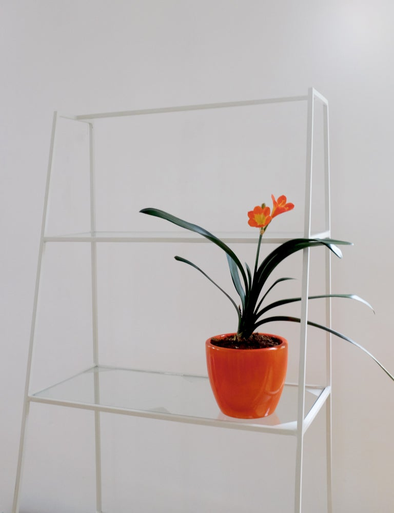 Image of Free standing shelves | various colours