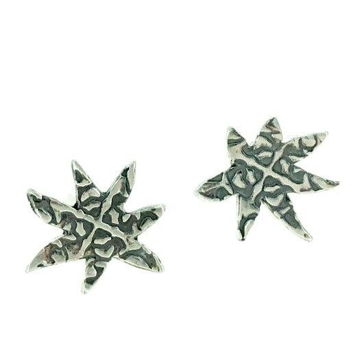 Image of Star post earrings