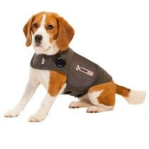 Image of ThunderShirt for Dogs in the category  on Uncommon Paws.
