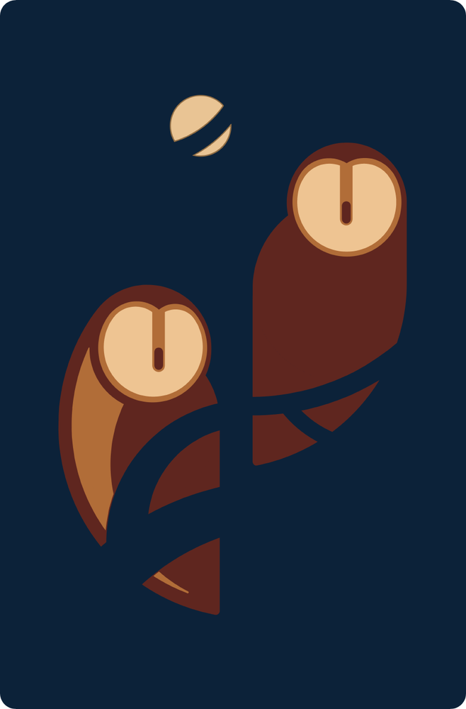 Image of owls