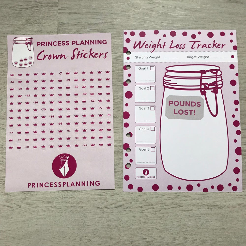 Image of A5 ORGANISER WEIGHT LOSS JAR INSERT WITH STICKERS
