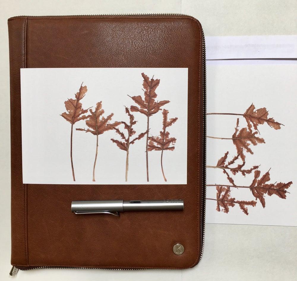 Image of Large Postcard - 'Autumn'