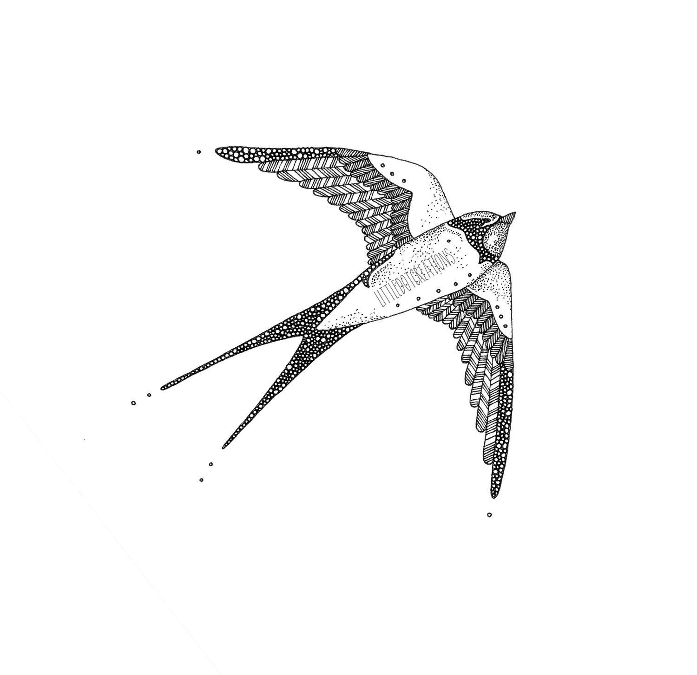 Image of Bird's Eye View