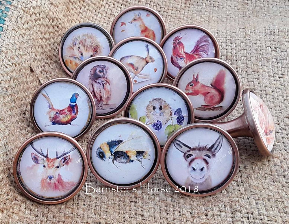 Image of COLOURFUL WILDLIFE, ANTIQUE COPPER METAL DRAWER KNOBS