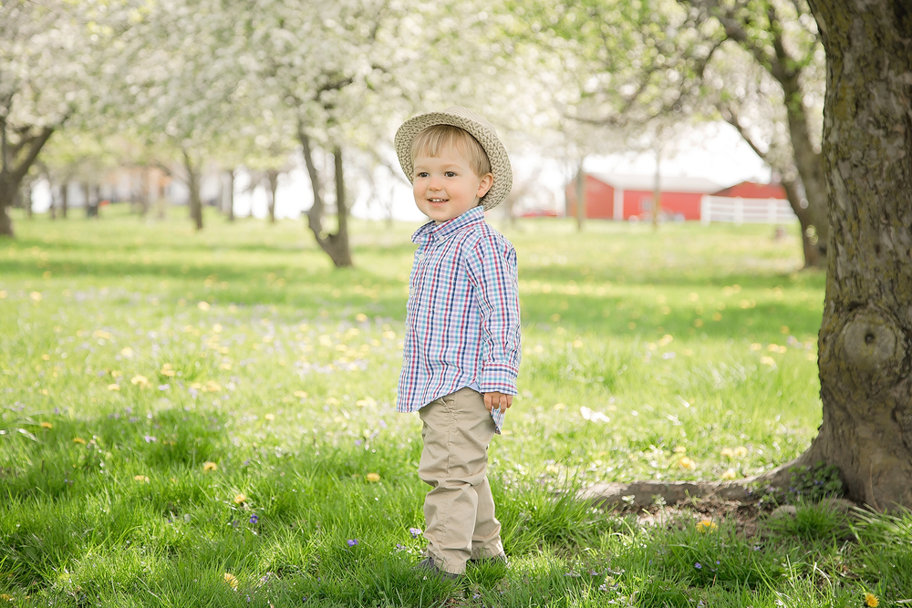 Image of Spring Mini Sessions