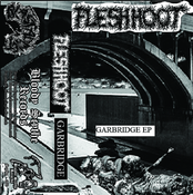 "Image of FLESH HOOT ""Garbridge"" cassette"