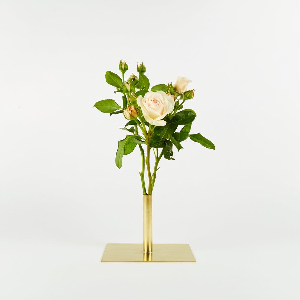 Image of Vase 00257 - Short Stick Vase
