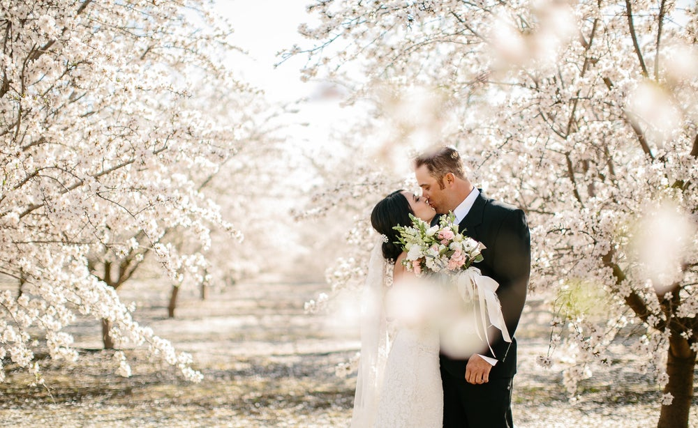 Image of All About Weddings