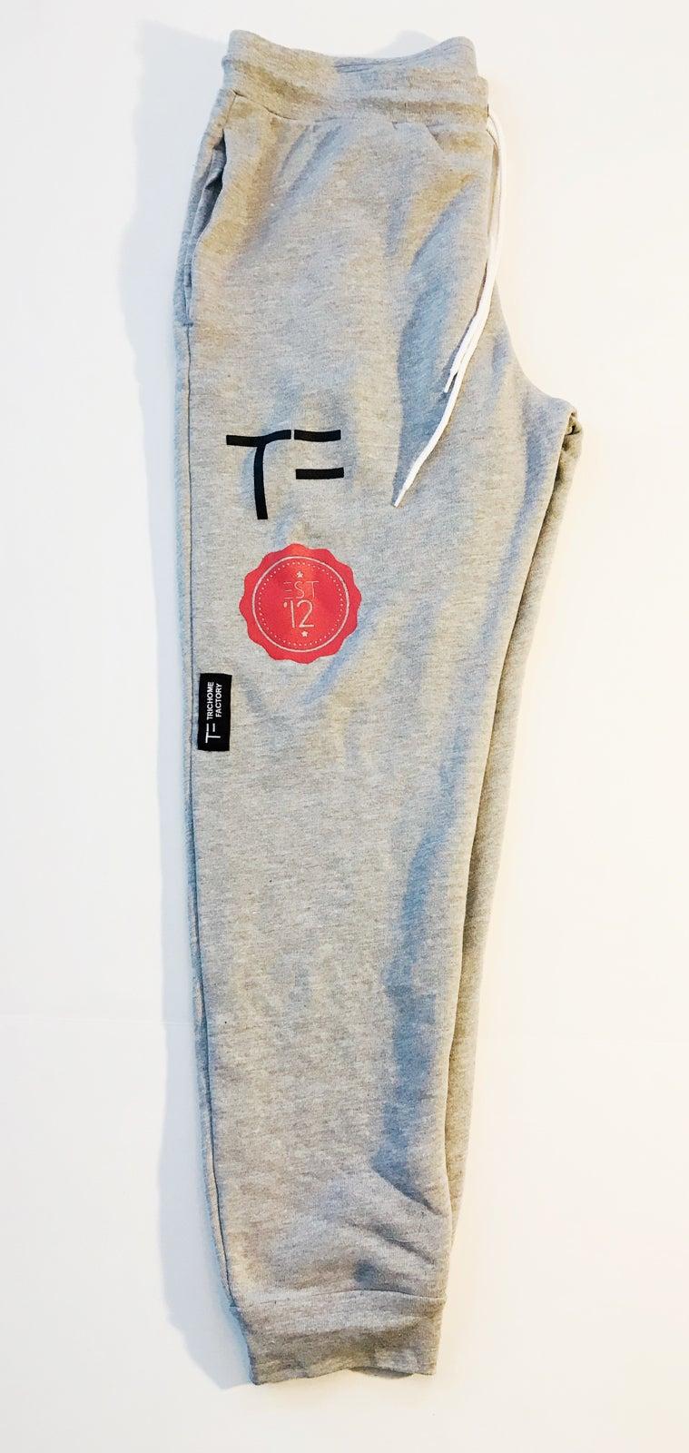 Image of TF Jogger Grey