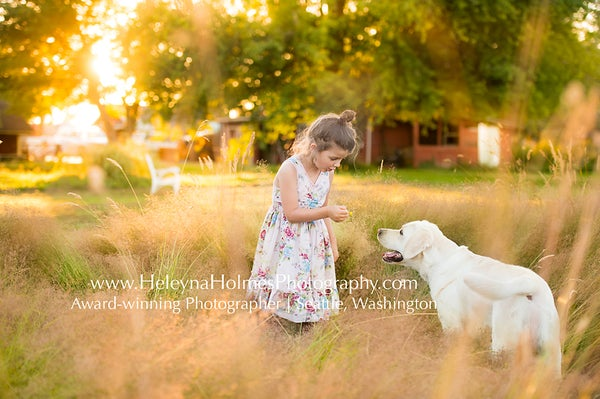 Image of Wild Hearts Farm - Summer Days Photo Session