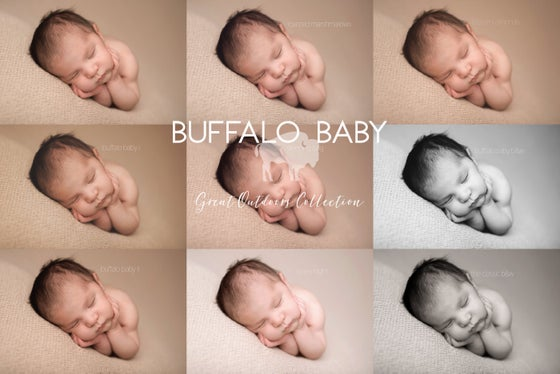 Image of Buffalo Baby - Great Outdoors
