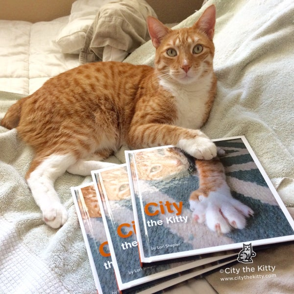Image of 3 PAWTOGRAPHED CITY THE KITTY BOOKS