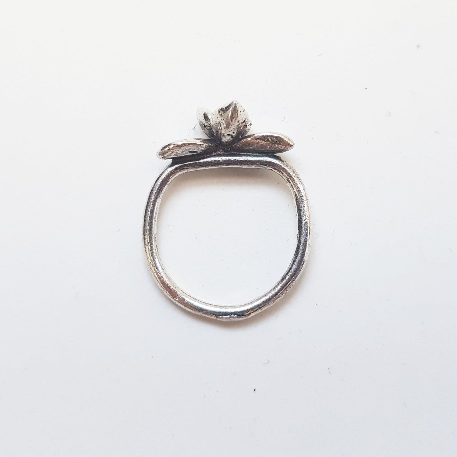 Image of Succulent Study Ring #1