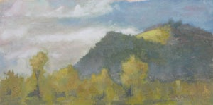 Image of Sunny Patch - oil painting