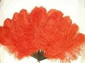 Image of Maribu Feather Hand Fan