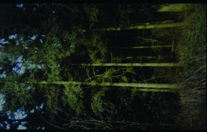 Image of Among The Bones/ Pink Priest split cassette