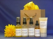 Image of Anti-Aging Skin Care Kit #100-Unscented Mist and Serum