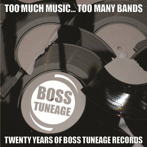 Image of Too Much Music, Too Many Bands: 20 Years Of Boss Tuneage 4xCD set