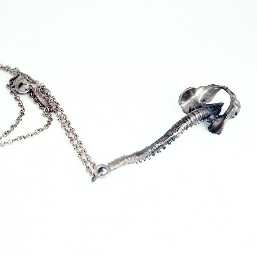 Image of Spine antique white brass
