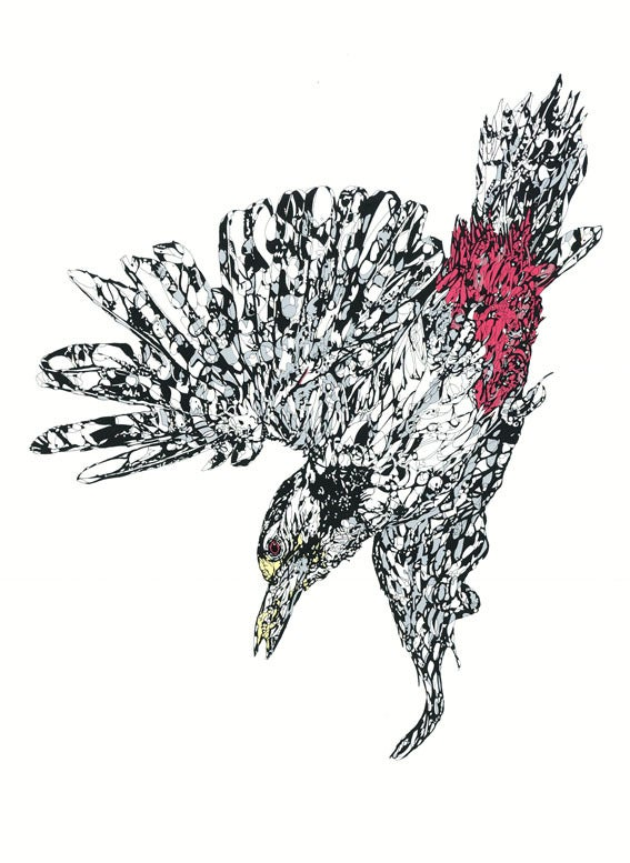 Image of Woodpecker screen print