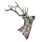 Image of Susie Wright- Stag Head
