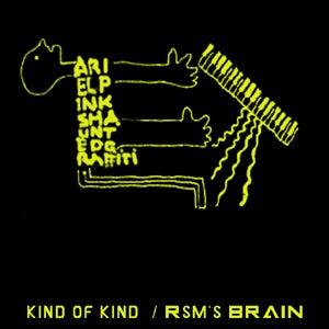 "Image of BIGLOVE007 ARIEL PINK'S HAUNTED GRAFFITI ""KIND OF KIND"""