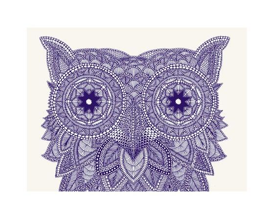 Image of Owl 50x40cm