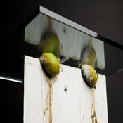 Image of Justin Beal, <i>Untitled (Lime Table)</i>, 2010