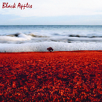 Image of The Black Apples - self-title LP
