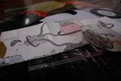 Image of Liger Discography Pack