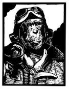 Image of Heroes of the Air II
