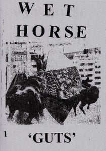 Image of Wet Horse Issue 1 'Guts'