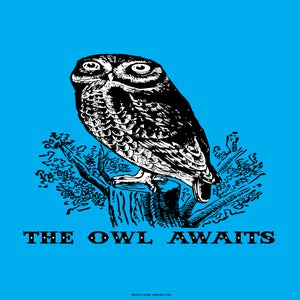 "Image of ""THE OWL AWAITS"" POSTER BY TONY EVJENTH"