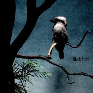 Image of Black Andy - Black Andy (CD)