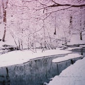 """Image of A Winter 3"""" CD."""
