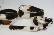 Image of Cow Dog Leash on UncommonPaws.com