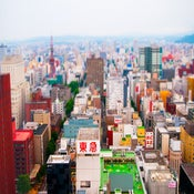 Image of sapporo
